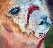 Alpaca by Natasha Hodgson
