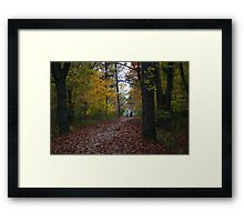 Dog walkers Framed Print