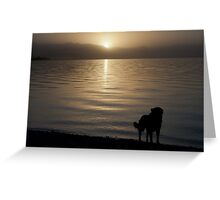 Family dog Greeting Card