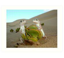 Spade-footed Geckoes - Namibia Art Print