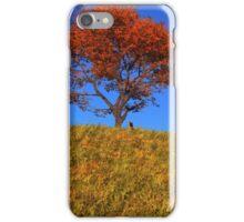 Clear Autumn Day iPhone Case/Skin