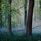 Heath Robinson by redtree