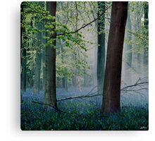 Heath Robinson Canvas Print