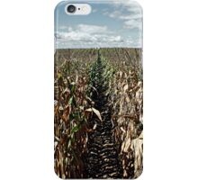 September Cornfields - iPhone Case iPhone Case/Skin