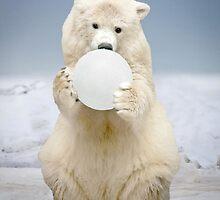 """Polar Bowl"" by John Hartung"