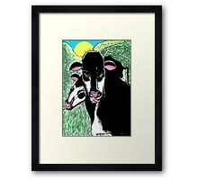 Steve's Cows Framed Print