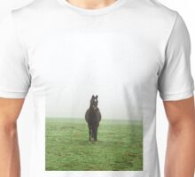 Horse in the mist on a meadow Unisex T-Shirt