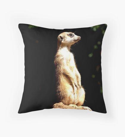 Meerkat - South Africa Throw Pillow
