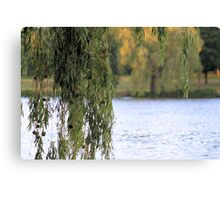 'Weeping Willow' Canvas Print