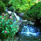 Waterfalls #3 by dandefensor