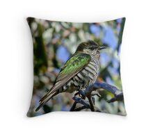 Shining Bronze-Cuckoo Two Throw Pillow