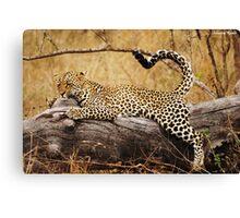 Wild Yoga! Canvas Print
