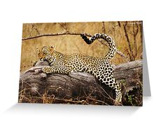 Wild Yoga! Greeting Card