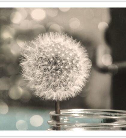 Dandelion in a Jar Sticker