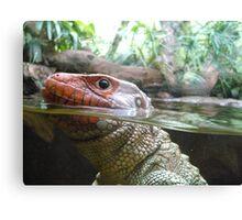 Reptile Close Up Canvas Print