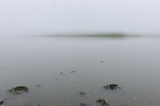 The fog descends; Courtmacsherry, West Cork, Ireland by Andrew Jones