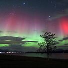 Red Auroras & the tree -II by Frank Olsen