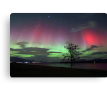 Red Auroras & the tree -II Canvas Print