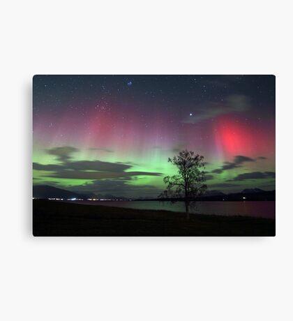 Red Auroras & the tree -II Canvas Print