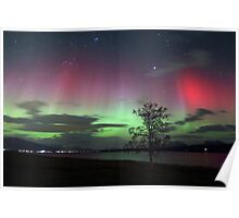 Red Auroras & the tree -II Poster