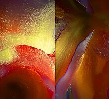 THE PASSION FOR COLOR by leonie7