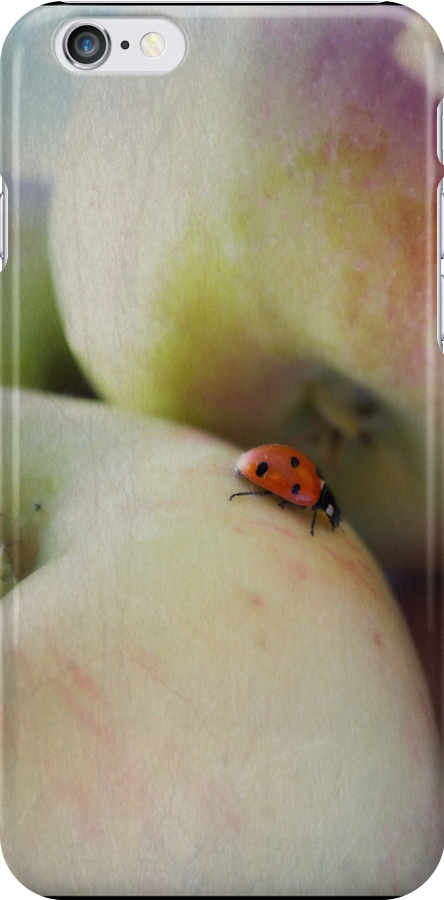 Lady on the Macs iPhone Case by Lisa Knechtel
