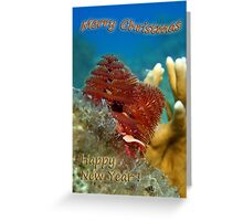 Christmas Tree Worm - Card Greeting Card
