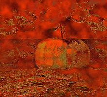 My favorite pumpkin by Marlies Odehnal