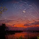 """Web Design"" - spider web at dusk by ArtThatSmiles"