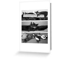 The Art of Sleep Greeting Card