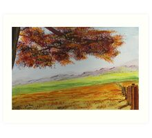 High Country Meadow Art Print