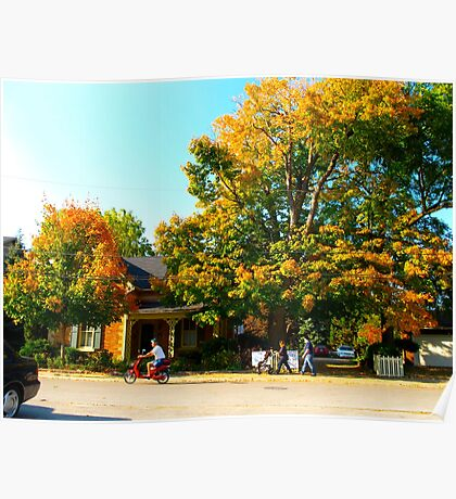 Rustic days in Unionville Poster