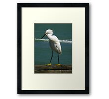 Birds On Pier : Strike The Pose Framed Print