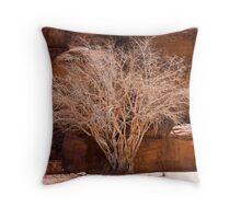Bleached Tree - Wadi Rhum Throw Pillow