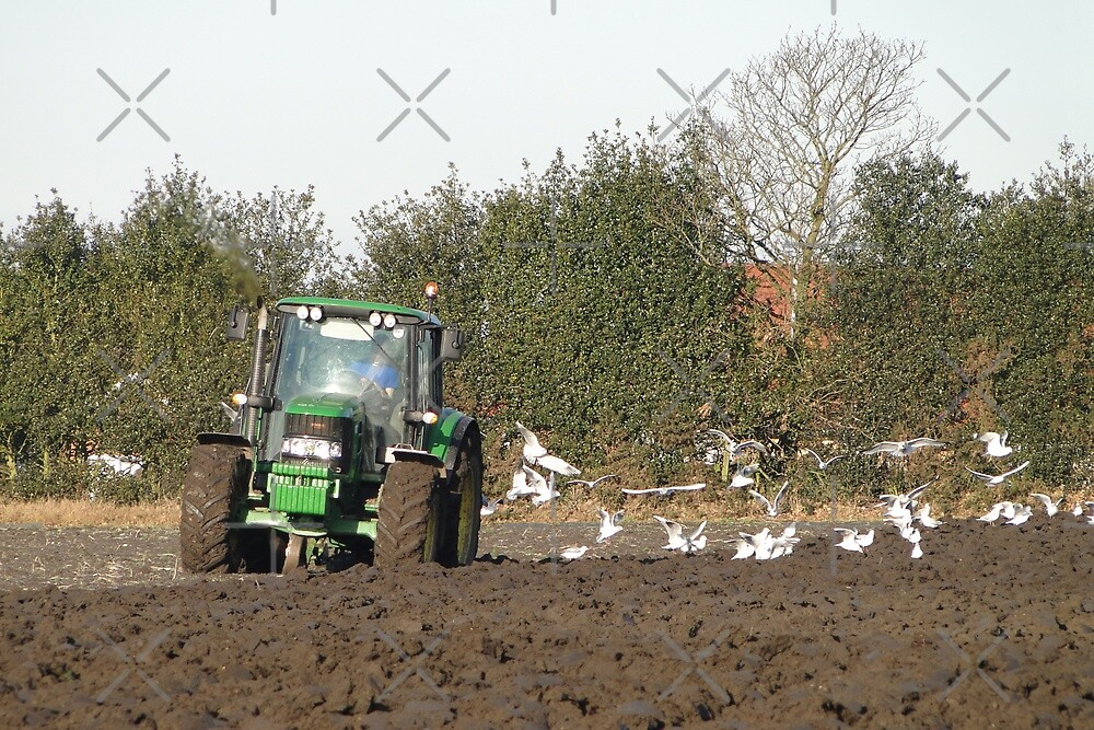 Ploughing on a frosty day by Barrie Woodward