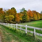 Follow the Fence by Sheri Nye
