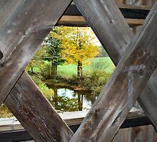 Bridge with a View by Sheri Nye