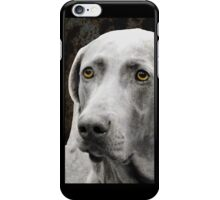 The Soulful Eyes of the Weimaraner - iphone case iPhone Case/Skin