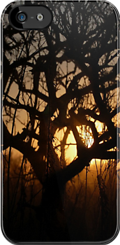Sunset iPhone Case by Denis Marsili