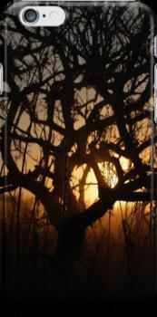 Sunset iPhone Case by Denis Marsili - DDTK