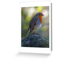 Autumn Robin Resting on Norfolk Fence Greeting Card