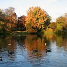 Our Local Park in Autumn by hjaynefoster