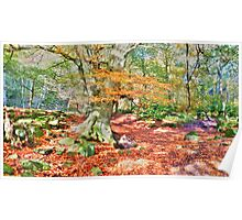 Autumn in Padley Gorge  Poster