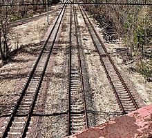 Train tracks under the Bridge of Death by Wintermute69