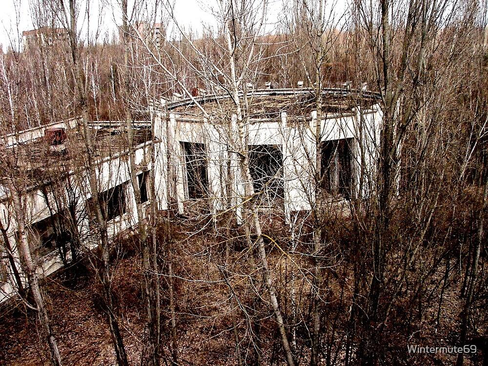 Building in Pripyat by Wintermute69