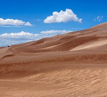 Dune Panorama - Great Sand Dunes, Colorado by Alex Zuccarelli