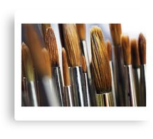 The Brush off Canvas Print