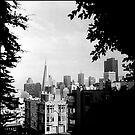 From Russian Hill by Patrick T. Power