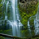 Proxy Falls 2 by Nick Boren