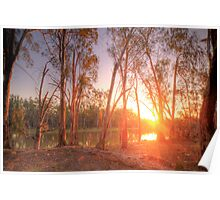 River Murray Sunset I - Renmark, South Australia Poster